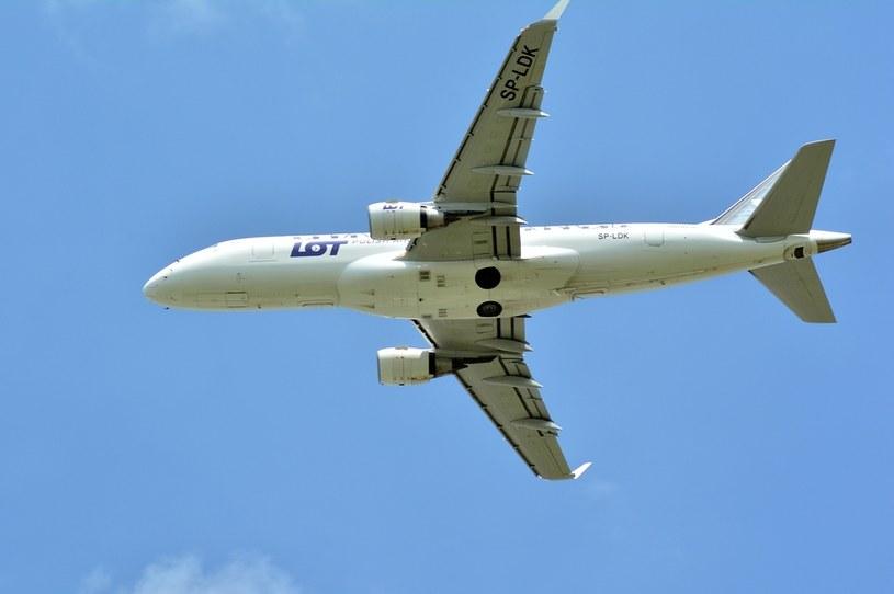 Utworzenie nowej spółki LOT Polish Airlines może być wstępem do głębokiej restrukturyzacji przewoźnika /123RF/PICSEL
