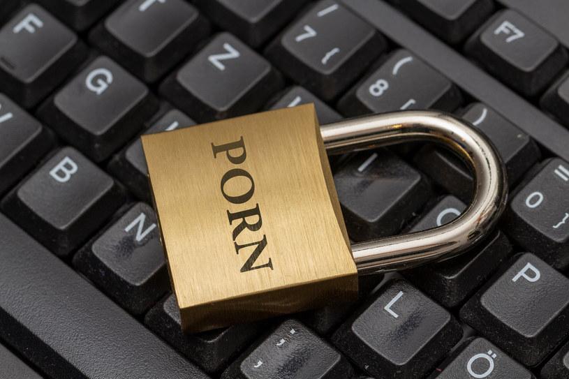 Uzależnienie pod pornografii w sieci to również poważny problem 21. wieku /123RF/PICSEL