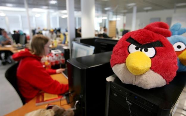 Użytkownicy Google+ mogą już grać w kultową grę z rozwścieczonymi ptakami w roli głównej /AFP