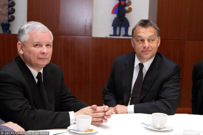 Victor Orban i Jarosław Kaczyński /Jan Kucharzyk /East News