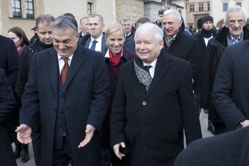 Victor Orban i Jarosław Kaczyński /Łukasz Gagulski/Agencja SE /East News
