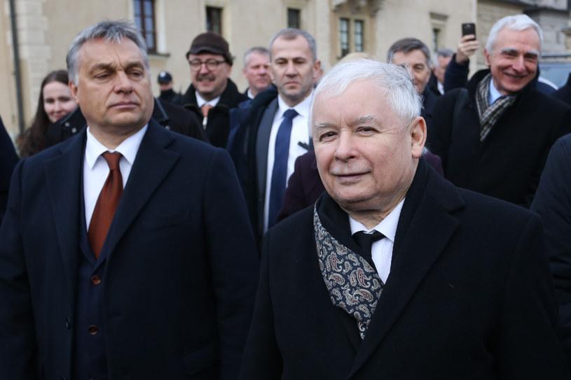 Viktor Orban i Jarosław Kaczyński na Wawelu /Jakub Porzycki /Agencja FORUM