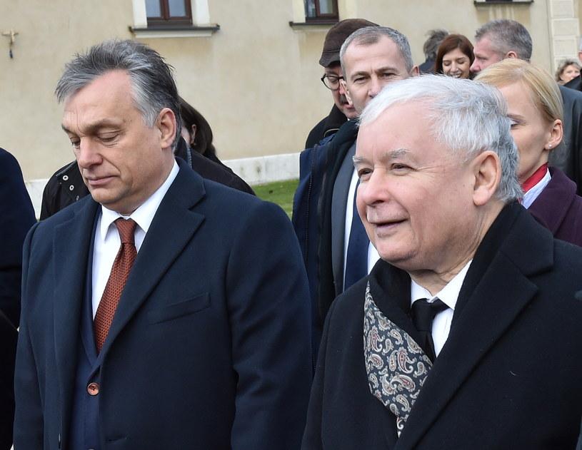 Viktor Orban i Jarosław Kaczyński w Krakowie /Jacek Bednarczyk /PAP