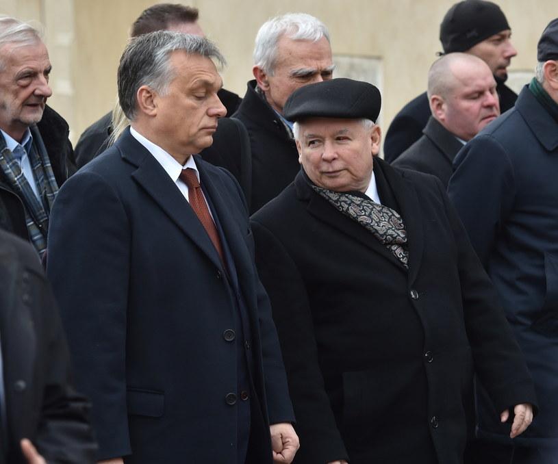 Viktor Orban i Jarosław Kaczyński /Jacek Bednarczyk /PAP