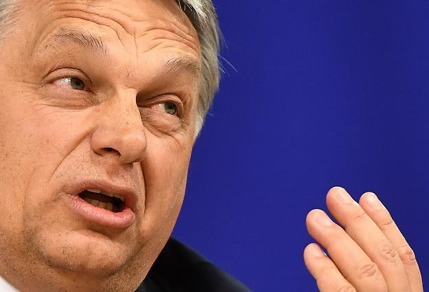Viktor Orban, premier rządu Węgier /AFP