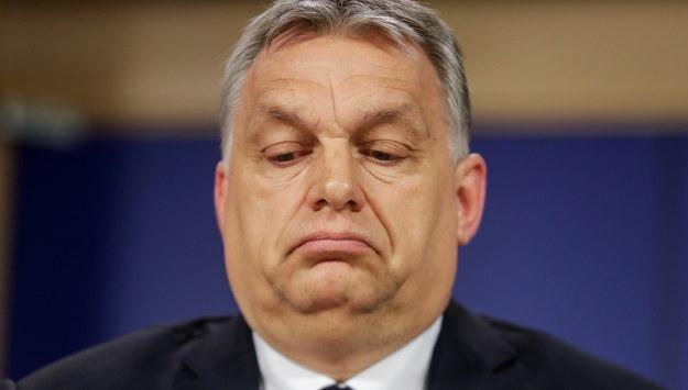 Viktor Orban /STEPHANIE LECOCQ  /PAP/EPA