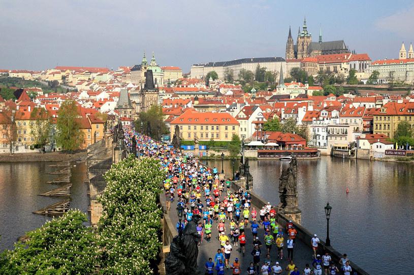 Volkswagen Maraton w Pradze /materiały prasowe