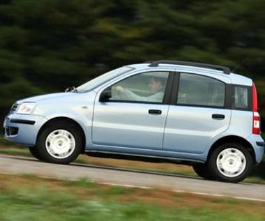 Volkswageny i fiaty do serwisu