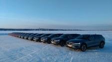 Volvo V60 Cross Country. Jesteśmy nad Zatoką Botnicką