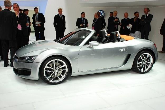 VW bluesport /INTERIA.PL