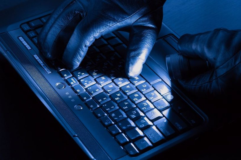 W 2013 roku cyberprzestępcy i hakerzy mieli pełne ręce roboty /123RF/PICSEL