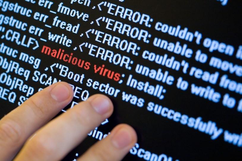 W 2013 roku odnotowano 560 incydentów związanych z phishingiem, czyli wyłudzaniem danych, takich jak hasła kont bankowych, poprzez podszywanie się pod godną zaufania osobę czy też instytucj /123RF/PICSEL