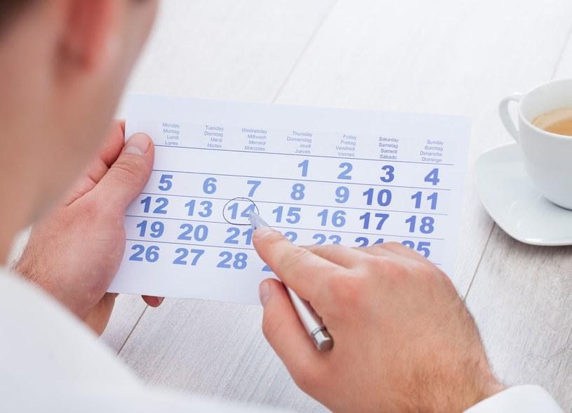 W 2015 roku czeka nas 113 dni wolnych /123RF/PICSEL