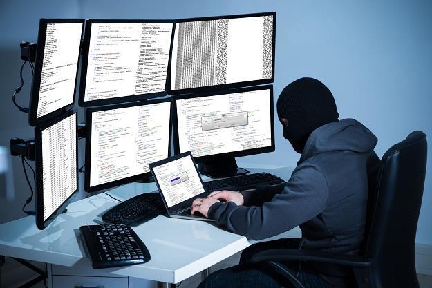 W 2017 roku nie będzie brakować cyberzagrożeń /©123RF/PICSEL