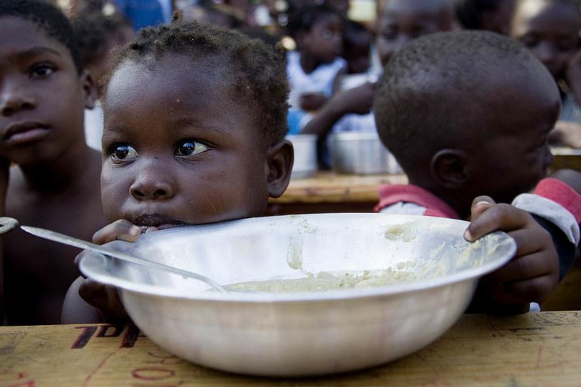W 2019 roku WFP udzielił pomocy blisko 100 mln ludzi w 88 krajach świata /Marco Dormino/MINUSTAH /Getty Images