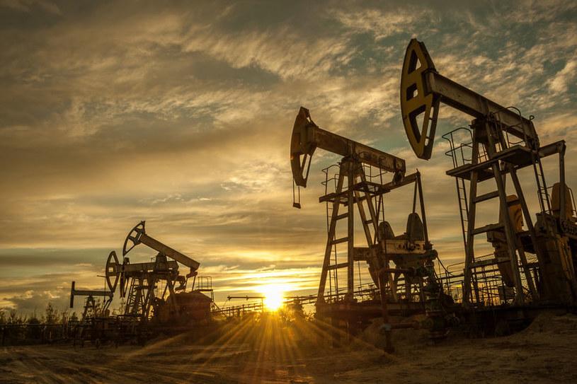 W 2020 roku światowy popyt na ropę zmniejszy się po raz pierwszy od kryzysu z 2009 roku.  / 123RF / PICSEL
