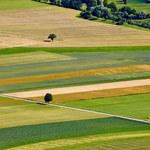 W 2021 roku będzie można kupić aż 5 hektarów ziemi rolnej?