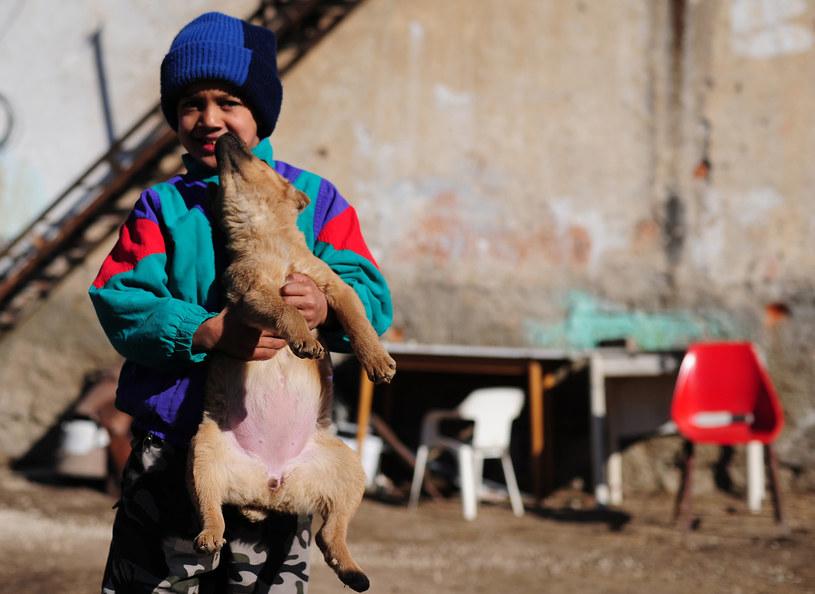 W 5,5 milionowej Słowacji mieszka około 500 tysięcy Romów /AFP