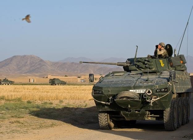 W Afganistanie jest 1/3 wszystkich wozów typu rosomak.../fot. Adam Roik, Combat Camera DOSZ /