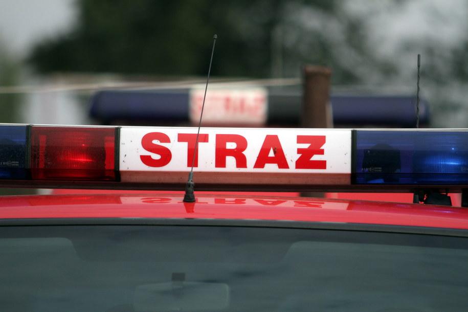 W akcji bierze udział kilkudziesięciu strażaków /PAP/Piotr Polak /PAP