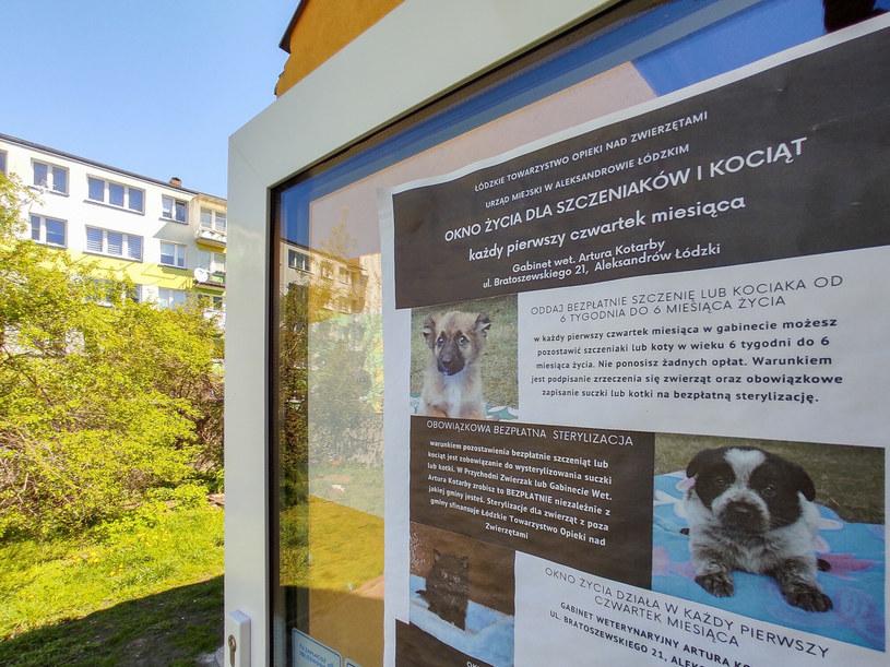 W Aleksandrowie Łódzkim do okna życia można przynieść niechciane zwierzę /Piotr Kamionka / REPORTER /East News