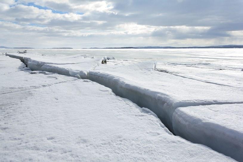 W Arktyce jest wyjątkowo mało lodu, zdjęcie ilustracyjne /123RF/PICSEL