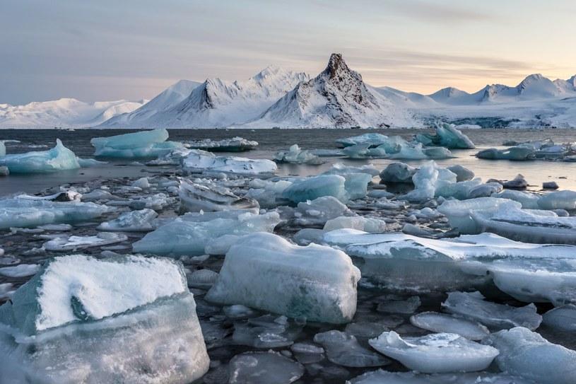 W Arktyce wykształca się nowy rodzaj klimatu. /123RF/PICSEL