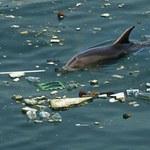 W Atlantyku jest ponad 10 razy więcej plastiku niż sądzono