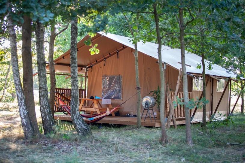 W Bazie Baranówka zamieszkać można w namiotach w stylu safari /Baza Baranówka /materiały prasowe