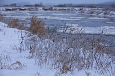 W Białymstoku temperatura spadła do -25 st. C, w Gołdapi do -27,8 st. C
