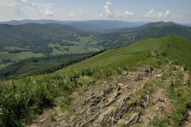 W Bieszczadach bardzo dobre warunki dla turystów /Maciej Rozwadowski /Reporter