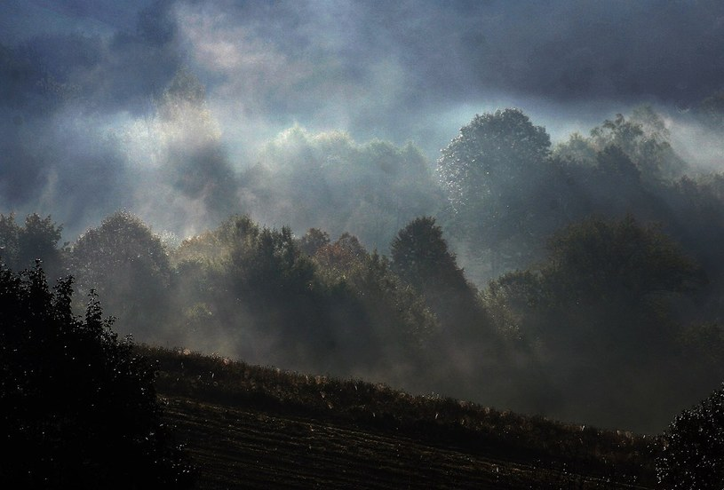 W Bieszczadach mgła ogranicza widoczność /Wojciech Zatwarnicki /Reporter