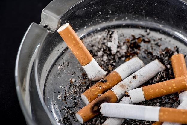 W bieżącym roku Polacy wydadzą na wyroby tytoniowe około 28 miliardy złotych /©123RF/PICSEL