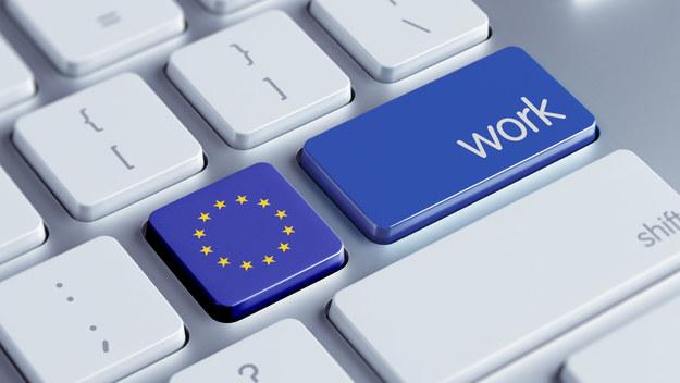 W całej UE brakuje do pracy już 274 tys. informatyków /123RF/PICSEL