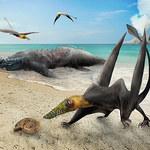 """W Chile odkryto """"latającego smoka"""" – żył ponad 160 milionów lat temu"""