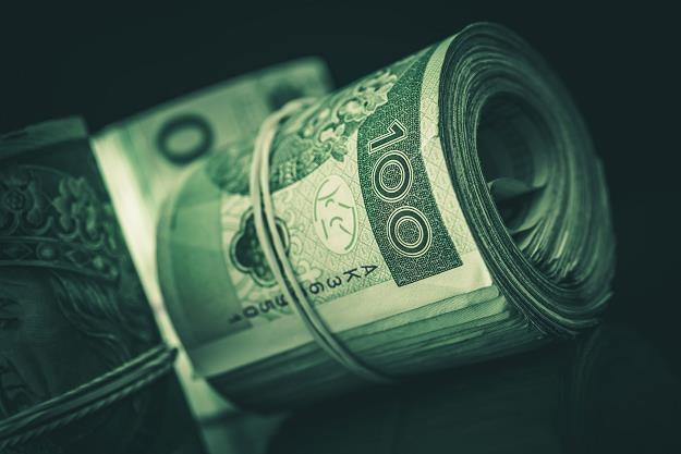 W ciągu roku każdemu Polakowi państwo zabiera tysiąc złotych, aby spłacać dług publiczny /©123RF/PICSEL