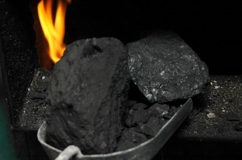 W ciągu trzech lat 2016-18 średnio ceny węgla wzrosły o 23 proc. /©123RF/PICSEL