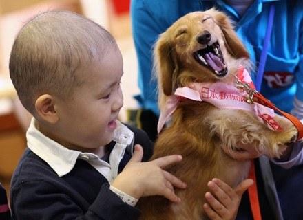 W  czasie zajęć dzieci w obecności psa dzieci dużo chętniej mówią i  czytają /Getty Images/Flash Press Media
