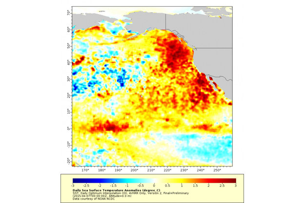 W czerwcu zeszłego roku podgrzany obszar rozciągał się na 1600 km w każdą stronę. /materiały prasowe