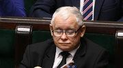 W domu Jarosława Kaczyńskiego nie jest ostatnio wesoło! Wszystko przez kotkę!