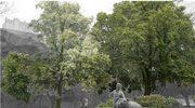 W Edynburgu powstaje pomnik niedźwiedzia Wojtka