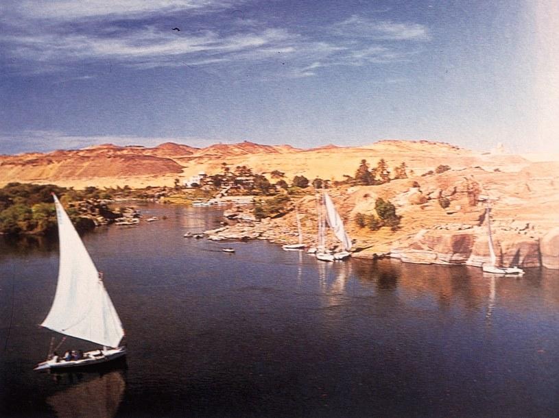 W Egipcie rafy można podziwiać już niedaleko brzegu  /© Bauer
