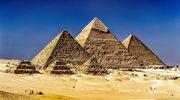 W Egipcie znaleziono szczątki... miniaturowego psa