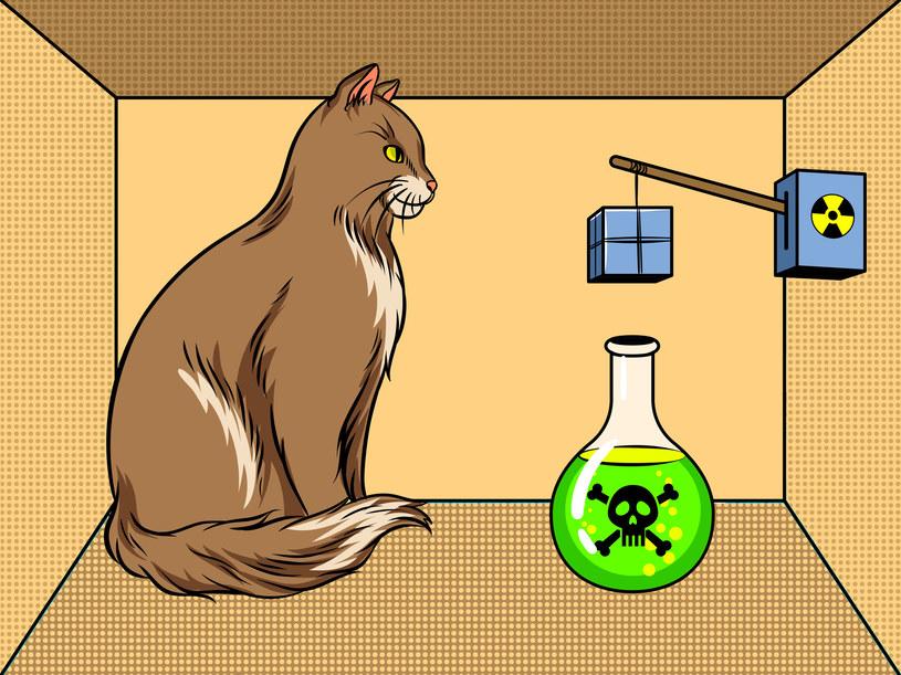 W eksperymencie kot znajduje się wewnątrz zamkniętego pudła wraz ze źródłem promieniotwórczym, detektorem promieniowania i pojemnikiem z trującym gazem /123RF/PICSEL