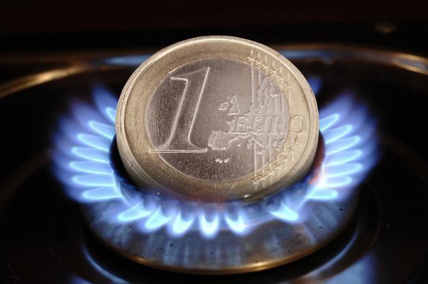 W Europie popyt na rosyjski gaz mocno wyhamował /© Panthermedia