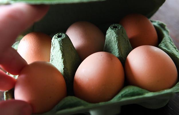 W Europie wiele milionów jaj z insektycydem /PAP/EPA