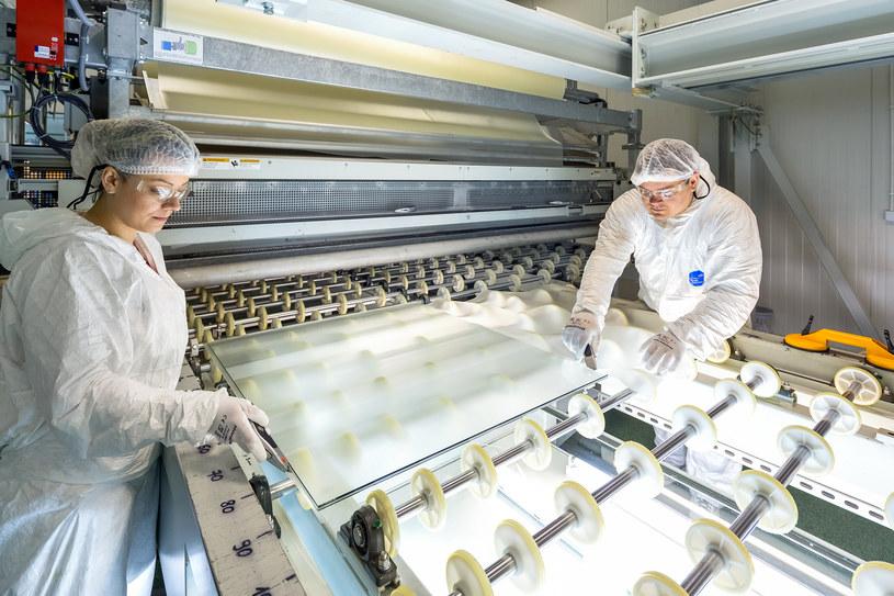 W fabryce Pilkington w Skierniewicach. Fot.Szymon Polański /Informacja prasowa