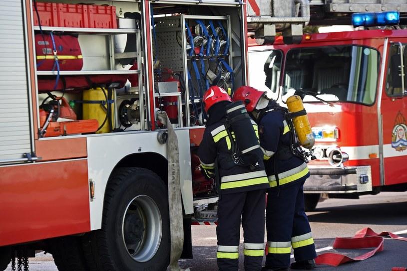 W gaszeniu pożarów w Szwecji biorą udział głównie ratownicy z województw zachodniopomorskiego i wielkopolskiego /Marek Lasyk  /Reporter