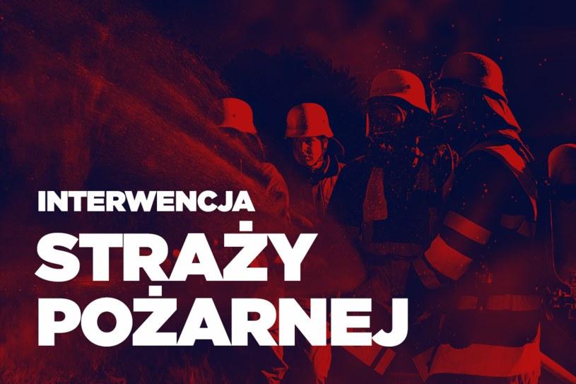 W gaszeniu pożaru brało udział dziewięć zastępów straży pożarnej /Interia.pl /INTERIA.PL