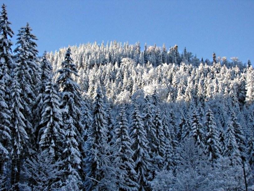W górach już zimowo /RMF